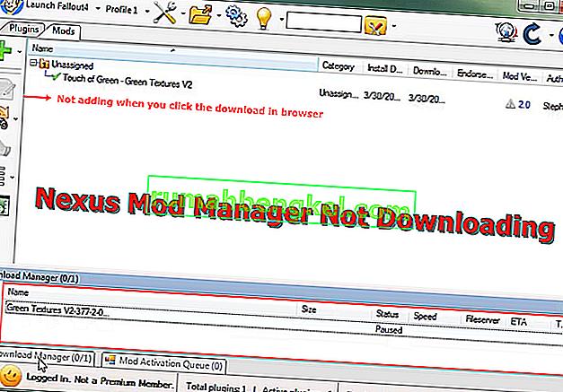 Correção: Nexus Mod Manager não está baixando